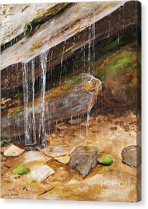 Cool Water Canvas Print by Carla Dabney