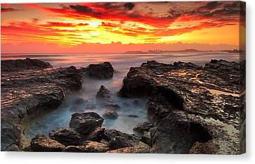 Coolongatta Gold Canvas Print by Mark Lucey