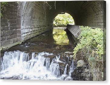 Canvas Print featuring the photograph Corbetts Glen by William Norton