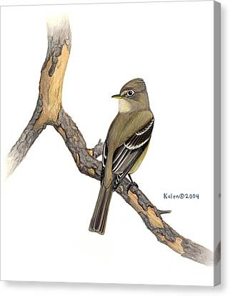 Cordilleran Flycatcher On Snag Canvas Print