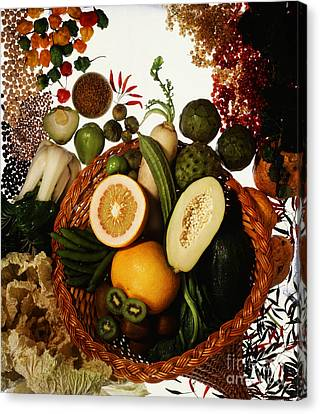 Cornucopia Of Exotic Fruit Canvas Print by Photo Researchers
