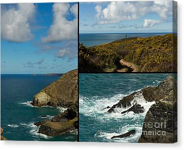 Cornwall North Coast Canvas Print by Brian Roscorla