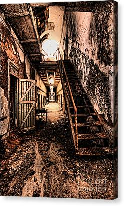 Corridor Creep Canvas Print by Andrew Paranavitana