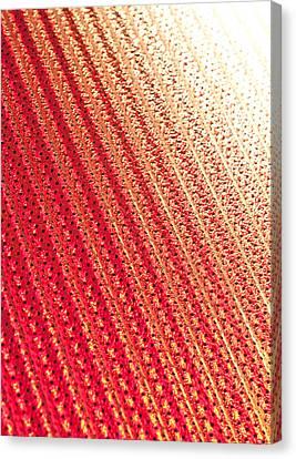 Metallic Sheets Canvas Print - Corrugated Metal by Tom Gowanlock
