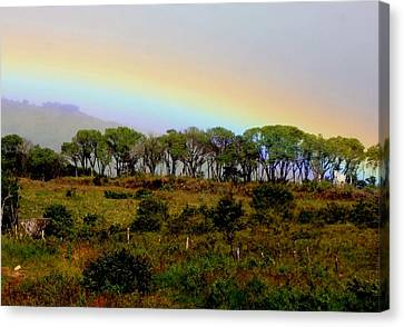 Costa Rica Rainbow Canvas Print by Myrna Bradshaw