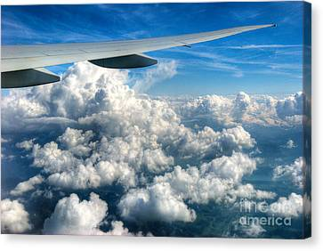 Cotton Balls Canvas Print by Syed Aqueel