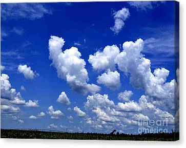 Canvas Print featuring the photograph Cottoncandy Sky by Tamera James
