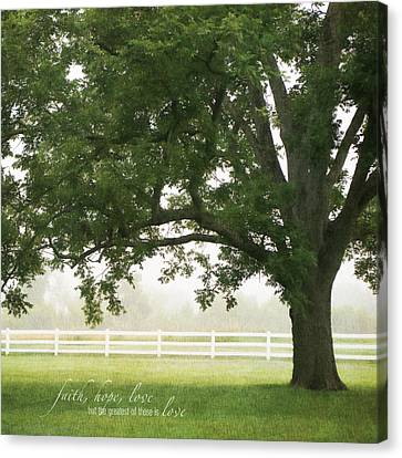 Country Fence Color Canvas Print by Mary Hershberger