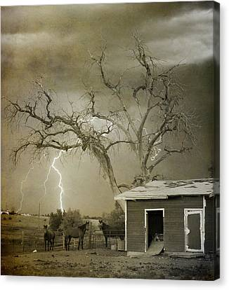 Country Horses Lightning Storm Ne Boulder Co 66v Bw Art Canvas Print by James BO  Insogna