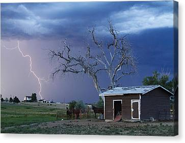 Country Horses Lightning Storm Ne Boulder County Co  63 Canvas Print by James BO  Insogna