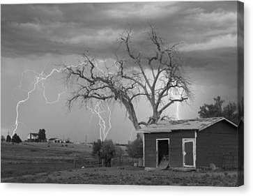 Country Horses Lightning Storm Ne Boulder County Co  76bw Canvas Print by James BO  Insogna
