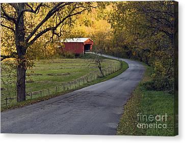 Country Lane - D007732 Canvas Print by Daniel Dempster