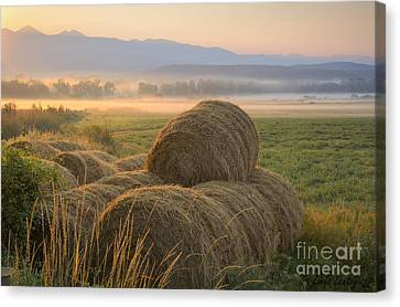 Country Life Canvas Print by Idaho Scenic Images Linda Lantzy
