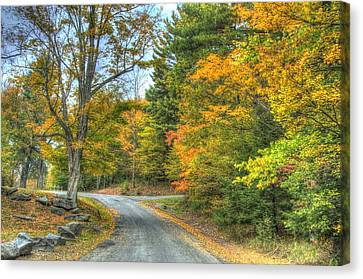 Country Road Canvas Print by Chris Hartman Price
