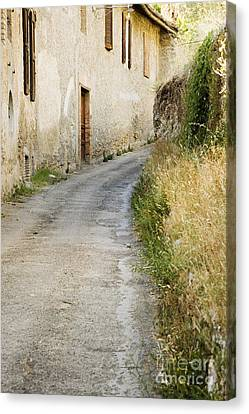 Country Road Passing House Canvas Print by Andersen Ross