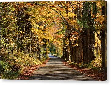 Country Roads In Autumn Canvas Print