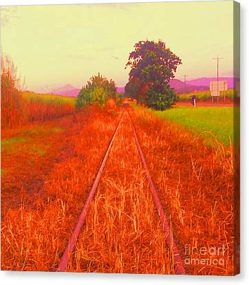 Country Tracks Canvas Print by David Peters