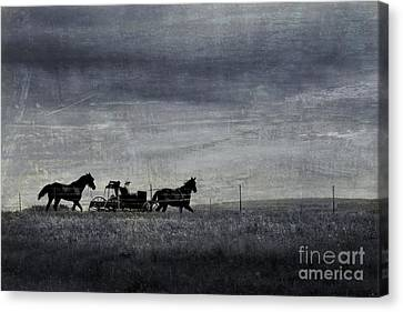 Country Wagon Canvas Print by Perry Webster