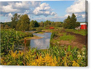 Canvas Print featuring the photograph Countryside by Cindy Haggerty