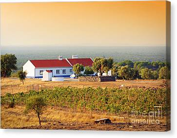 Countryside House Canvas Print by Carlos Caetano