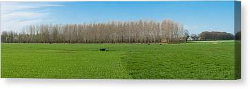 Countryside Landscape Canvas Print by Hans Engbers