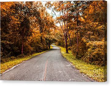 Countryside Road In Autumn Canvas Print by Mongkol Chakritthakool