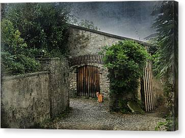 House Pet Canvas Print - Courtyard by Maria Dryfhout