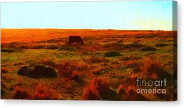Cow Grazing In The Hills Canvas Print by Wingsdomain Art and Photography