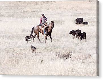 Cowboy Canvas Print by Cindy Singleton