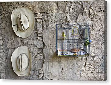 Canvas Print featuring the photograph Cowboy Hats And Parakeets by Craig Lovell