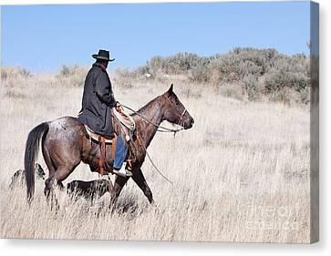 Cowboy On Horseback Canvas Print by Cindy Singleton