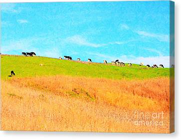 Cows On A Hill . 40d3430 . Painterly Canvas Print by Wingsdomain Art and Photography