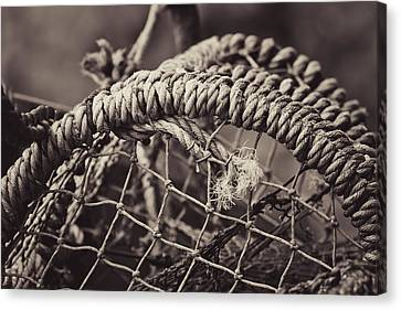 Canvas Print featuring the photograph Crab Cage by Justin Albrecht