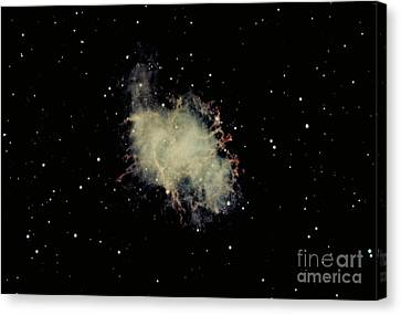 Crab Nebula Canvas Print by Hale Observatories