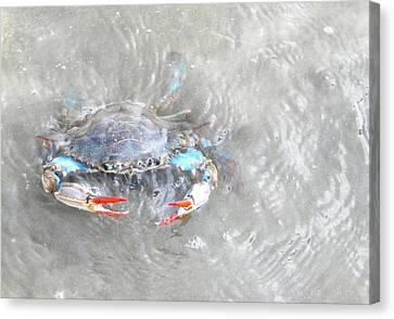 Crab Shack Canvas Print