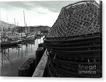 Crab Traps Canvas Print by Darcy Michaelchuk