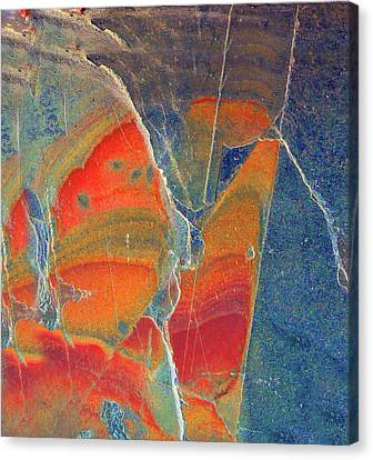 Cracked Canvas Print by Pamela Patch