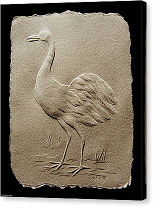 Crane Bird Canvas Print