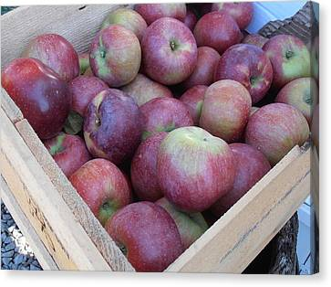 Farm Stand Canvas Print - Crate Of Apples by Kimberly Perry