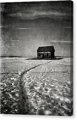 Crawling Home  Canvas Print by Empty Wall