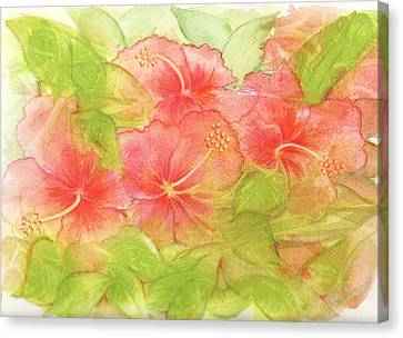 Creamsicle Hibiscus Canvas Print by Carla Parris