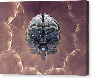 Left Hemisphere Canvas Print - Creation Of The Human Brain, Artwork by Laguna Design