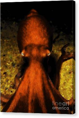 Creatures Of The Deep - The Octopus - V4 - Orange Canvas Print by Wingsdomain Art and Photography