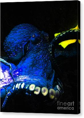 Creatures Of The Deep - The Octopus - V6 - Blue Canvas Print by Wingsdomain Art and Photography