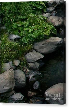 Creek Flow Panel 2 Canvas Print by Peter Piatt
