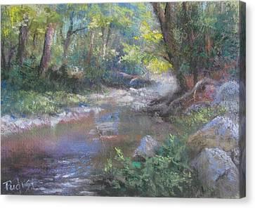 Creek Study Canvas Print