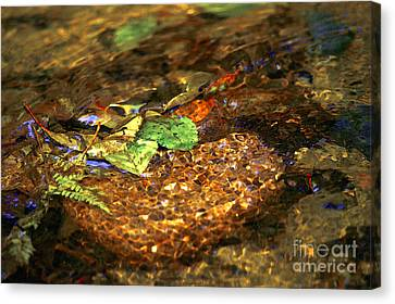 Creekside Canvas Print by Sharon Talson