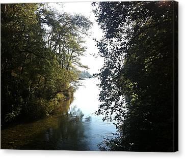 Crescent Lake Thru The Trees Canvas Print