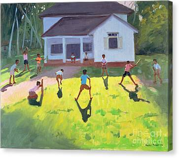 Cricket Canvas Print by Andrew Macara