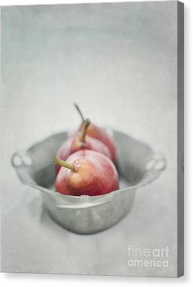 Crimson And Silver Canvas Print